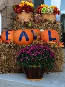 Town Hall Fall 2014