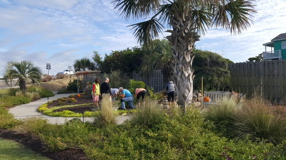 HBBC Members work on the Fall Planting.